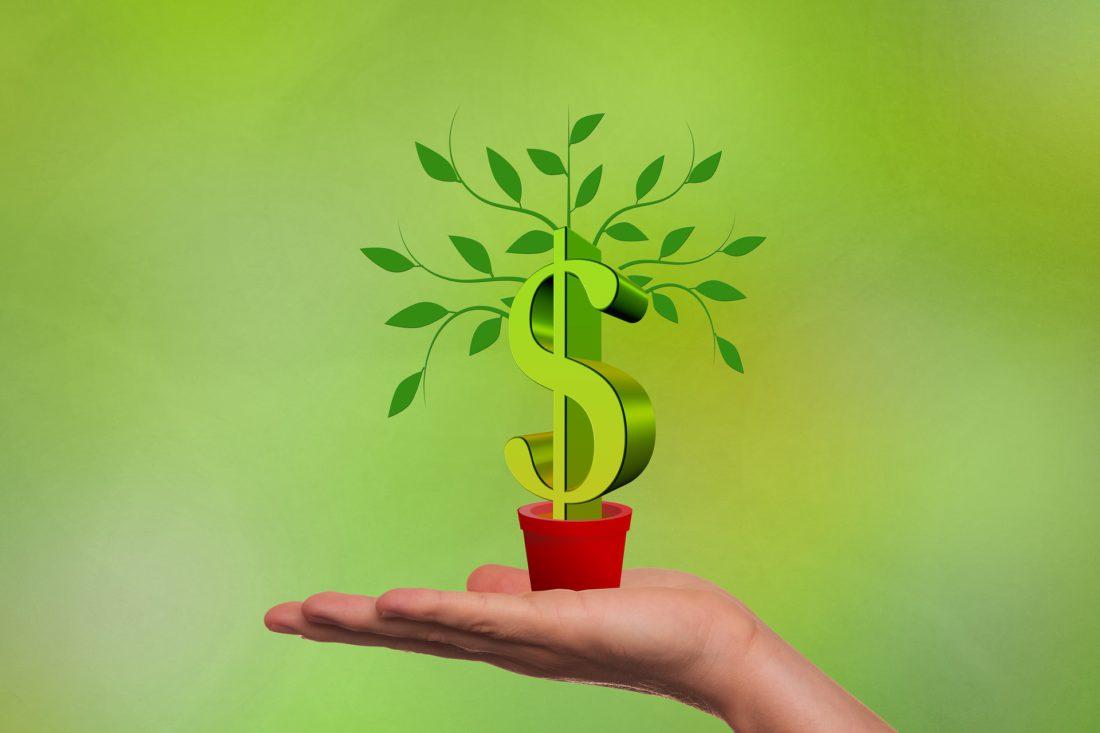 Alior Bank i jego akcje dobroczynne